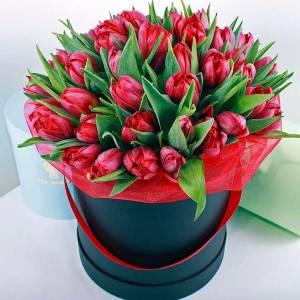 39 красных тюльпанов в коробке R981