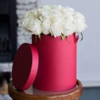 19 белых роз в коробке R533